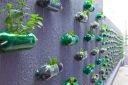 Mur de culture végétale.
