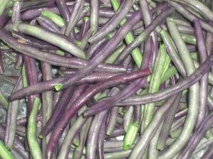 Haricots violets en pleine cuisson.