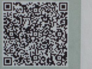 CIMG6352